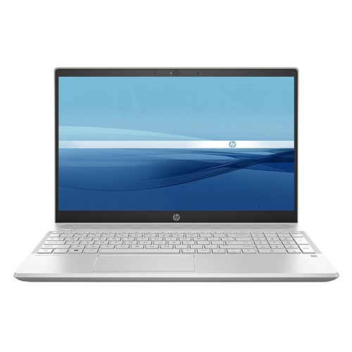 Laptop HP Pavilion 15-cs1009TU 5JL43PA