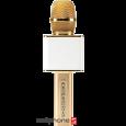 Micro Magic Karaoke YS-10 | CellphoneS.com.vn