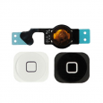Sửa lỗi nút home bị liệt - Thay cáp home iPhone 5C - CellphoneS